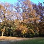 Veduta del parco